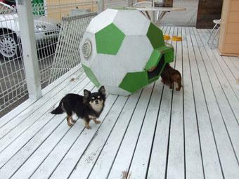 スマイル犬1.28-006