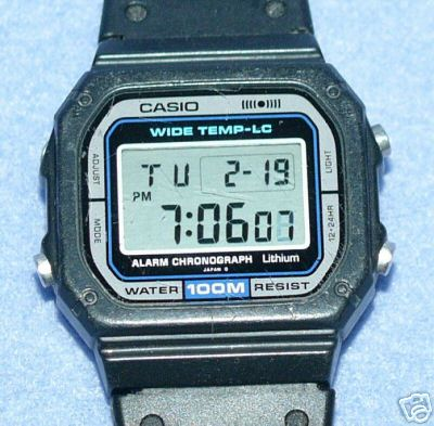 casio_ww-710.jpg