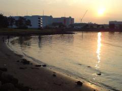 4大井ふ頭中央海浜公園DSC00254