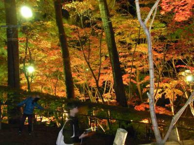 松雲山荘2011 01