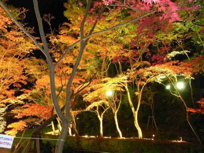松雲山荘2011 02