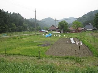 20110605生杉 018