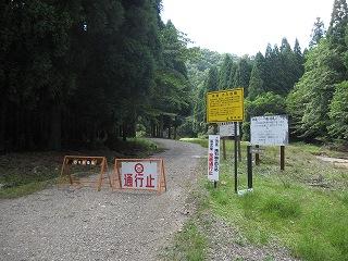 20110709-10生杉 004