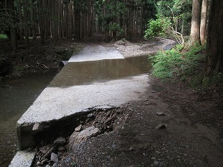 20110709-10生杉 009