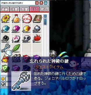 Maple0018.jpg