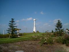 ひまわりの塔