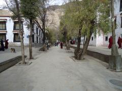 ヒプノセラピー スピリチュアルライフ チベット 仏教 セラ寺 問答の寺