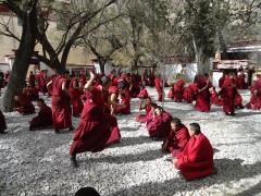 ヒプノセラピー スピリチュアルライフ チベット 仏教教義 問答の寺 セラ寺