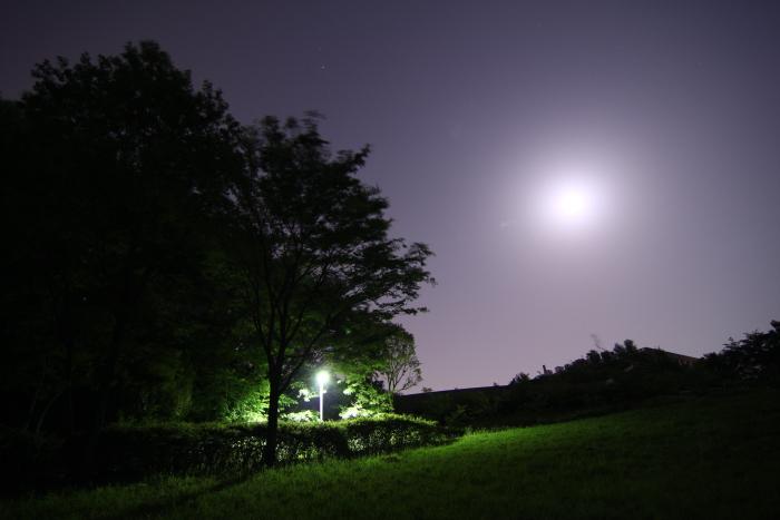20110521茅ヶ崎公園a
