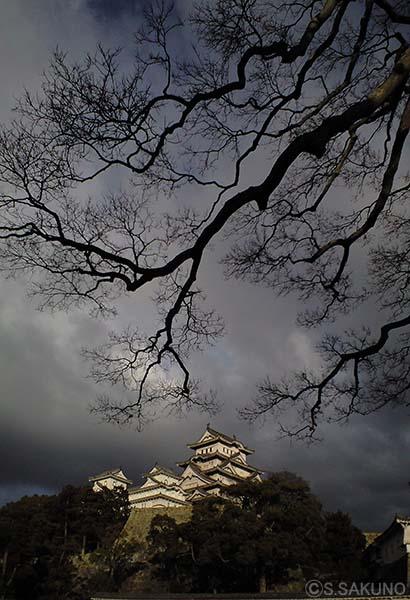 姫路城CA390087