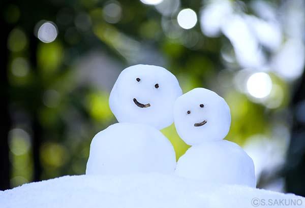 雪だるま024W7085