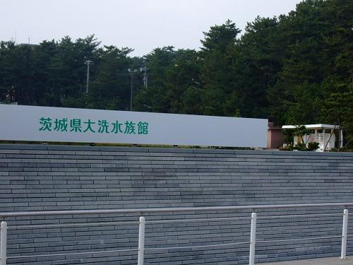 2008_01070007.jpg