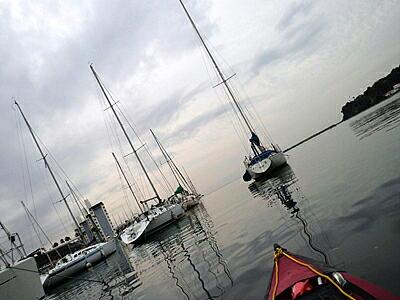 20111109-5.jpg