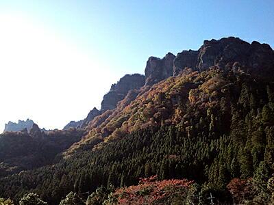 20111115-2.jpg