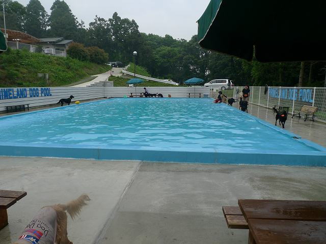 20110611-2