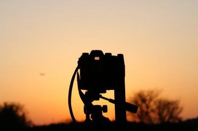写真を撮ろう。来年も、その先も。