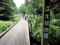 東高根森林公園1
