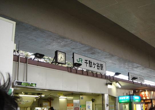 DSC00980.jpg