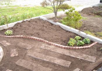 2011-08-30踏み石設置、右土壌改良、プリムラ移植 (2)