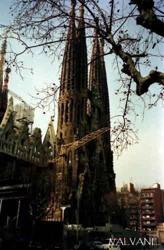 スペイン、サグラダ・ファミリア教会全景。
