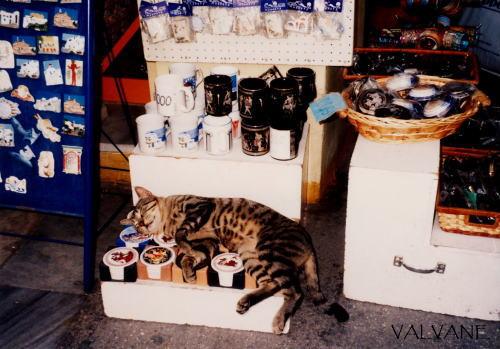 ギリシャ、アテネ。お土産屋さん店頭で。