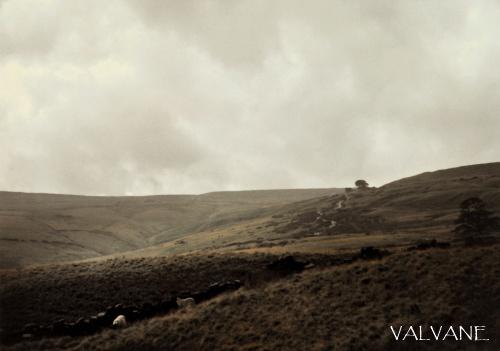 イギリス、「嵐が丘」の嵐
