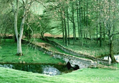 イギリス、緑のコッツウォルズ