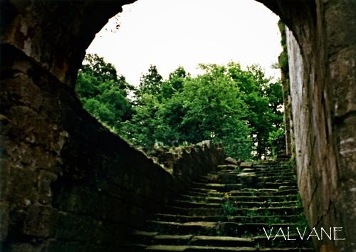 イギリス、緑に沈むファウンティンズ修道院