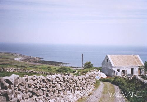 アイルランド、葺き替え中の家