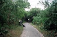 昔の角島8