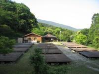 鮎もどし自然公園-キャンプサイト