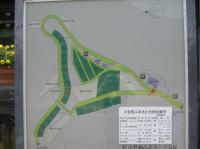 小豆島オートキャンプ場-2