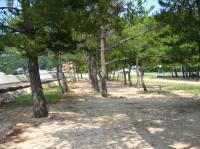 小部キャンプ場-5
