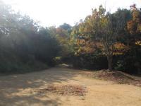 2007:kagawa_camp-5