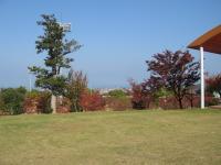 2007:kagawa_camp-15