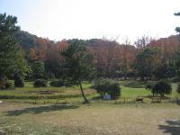 2007:kagawa_camp-24