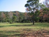 2007:kagawa_camp-26