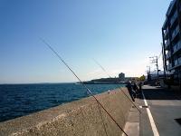防波堤際の釣り場