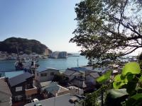 浦賀湾を望む