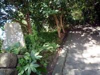 奥宮への石段