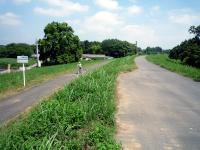 サイクリングロードと管理用道路