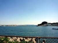 漁業や船釣で賑わっていそうな走水港
