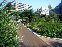 神田神社屋上庭園
