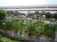 園内の光景