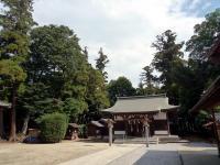 氷川神社社叢