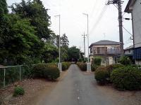 清光寺参道