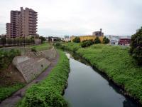 旧芝川下流