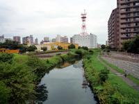 現在の旧芝川