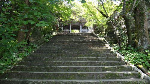 1竹林寺石段