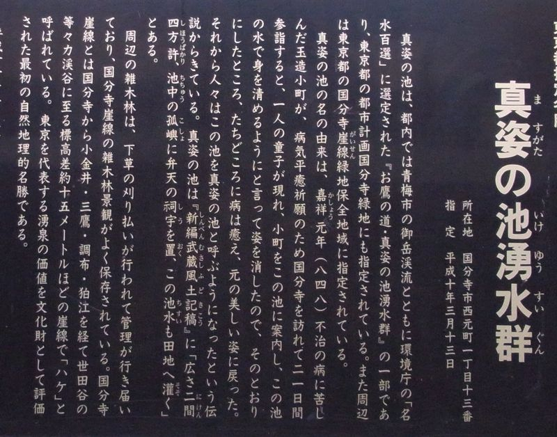1241710.jpg